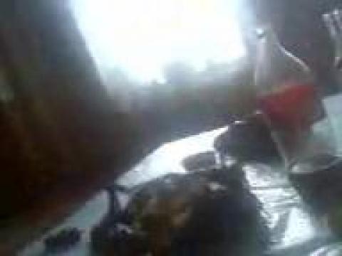 Узбечка сняла на телефон секс с братом узбеком